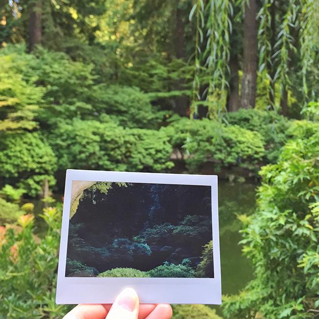Portland Japanese Gardens | Alaina Ann Photography