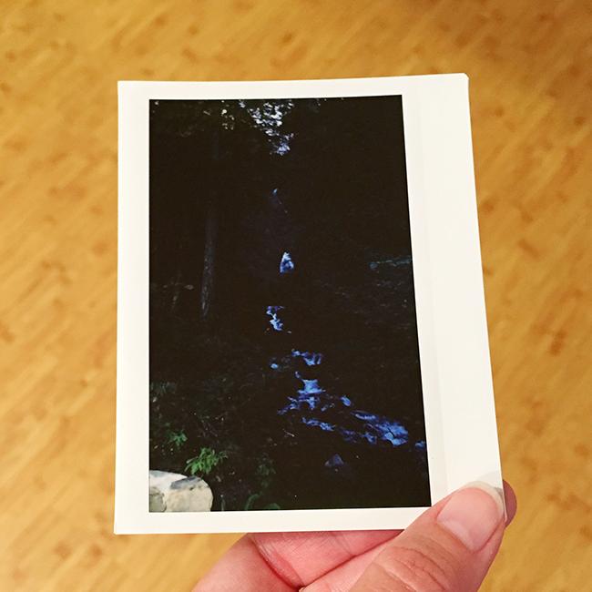 Wahkeena Falls | Alaina Ann Photography