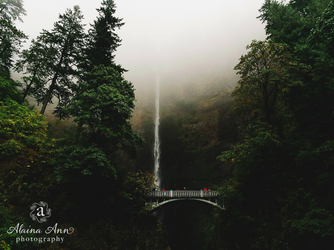 Waterfall from the Sky | Friday Favorite | Alaina Ann Photography