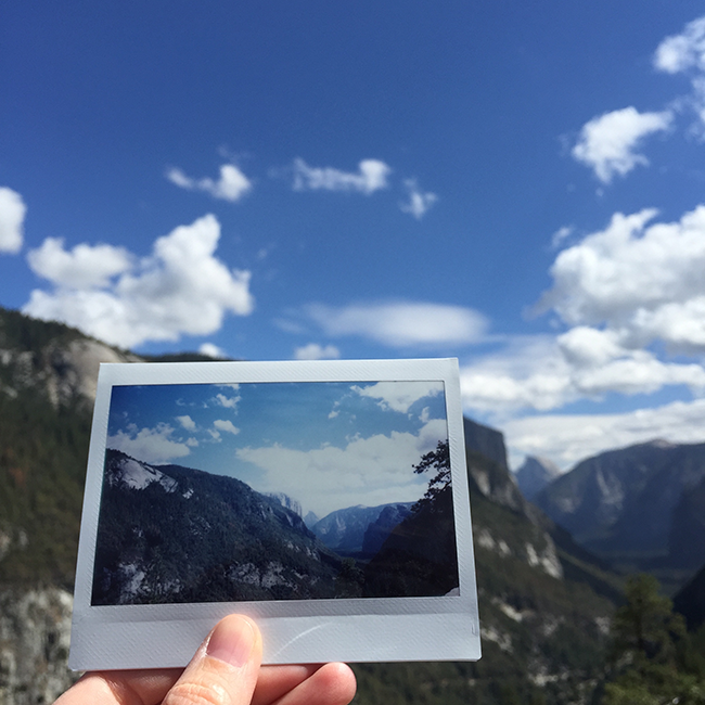 Yosemite National Park | Alaina Ann Photography