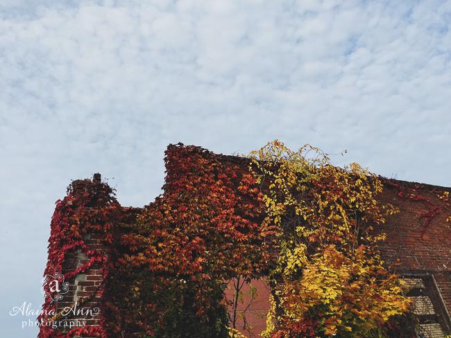 Urban Fall | Friday Favorite | Alaina Ann Photography