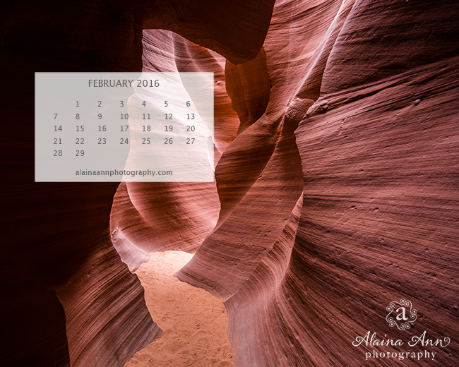 February 2016 Wallpaper Calendar | Alaina Ann Photography