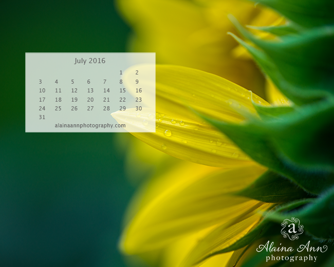 July 2016 Wallpaper Calendar | Alaina Ann Photography