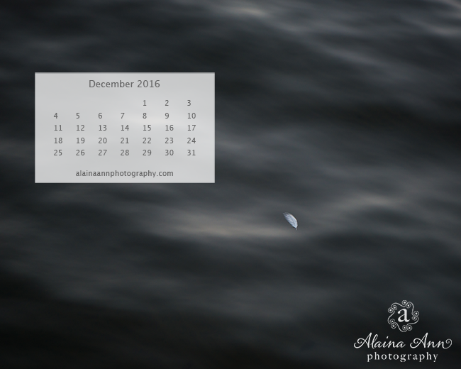 December 2016 Wallpaper Calendar | Alaina Ann Photography