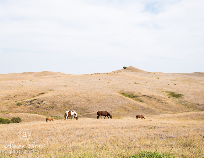 July | Little Bighorn Battlefield National Monument