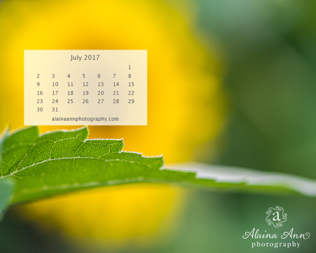 July 2017 Wallpaper Calendar | Alaina Ann Photography