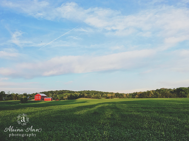 Poolesville Farm | Friday Favorite | Alaina Ann Photography