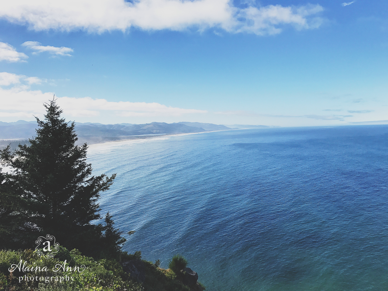 Overlooking the Pacific | Friday Favorite | Alaina Ann Photography