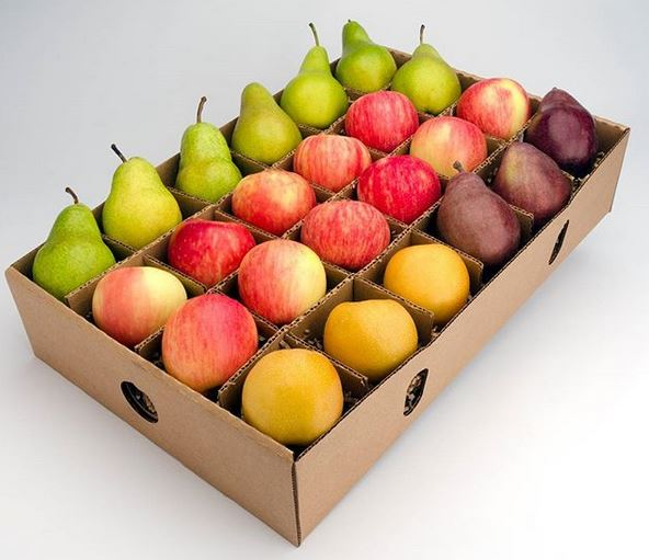 fall winter fruit box.JPG