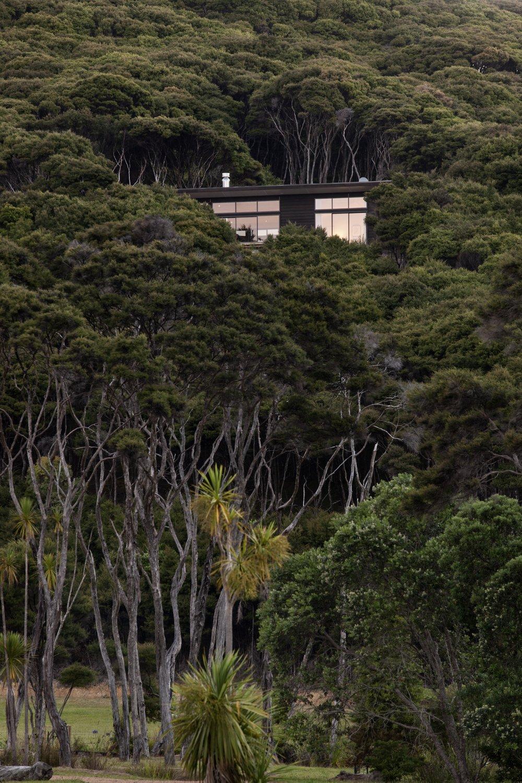 Kawau Island House_Context_1 of 6.jpg