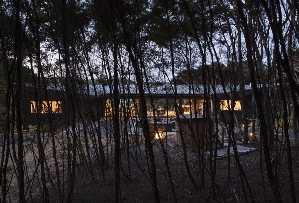 Kawau Island House_Through trees_3 of 6.jpg