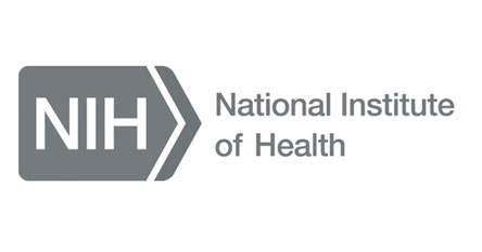 NIK grayscale logo.jpg