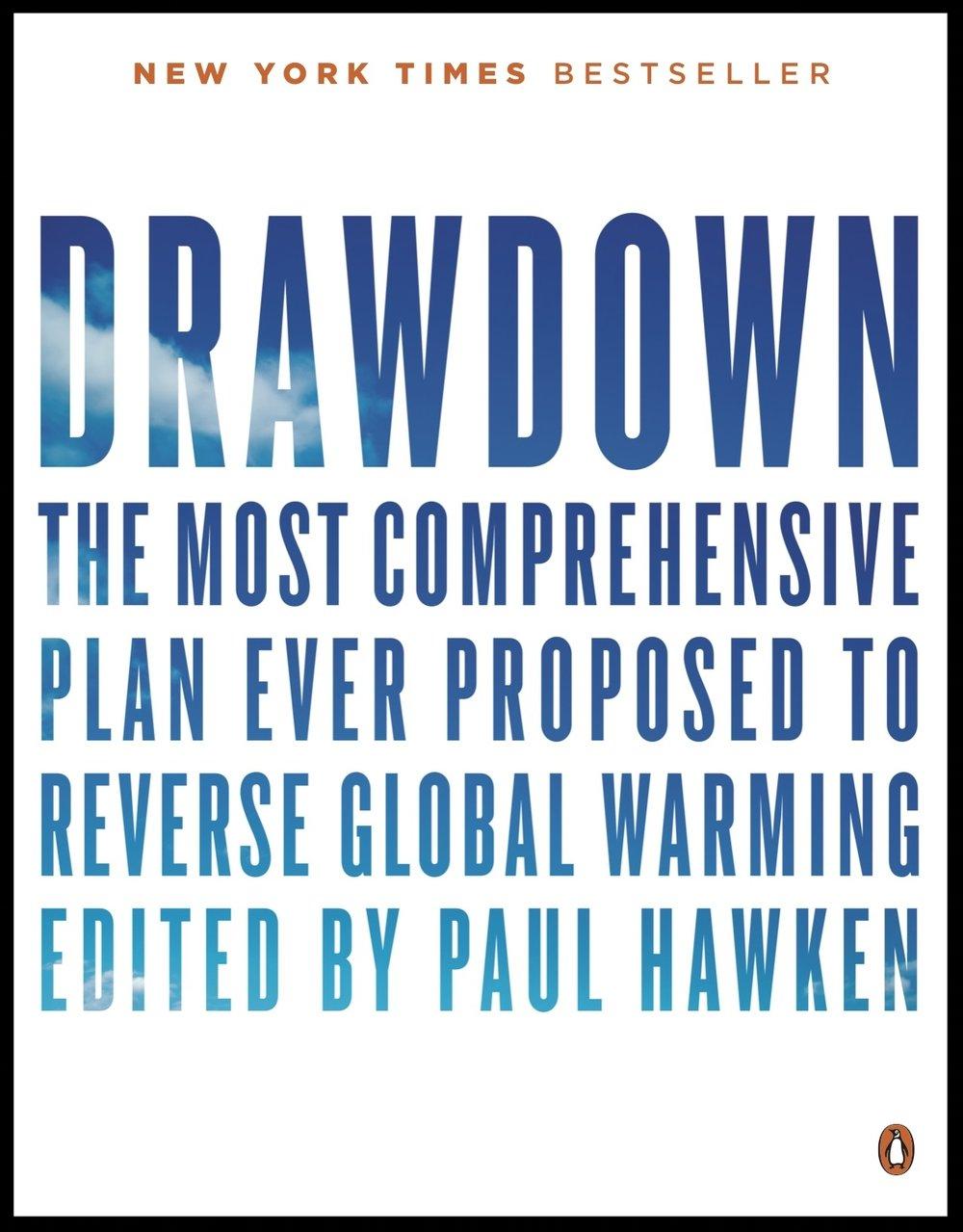 Drawdown Book Cover - NYT Bestseller.jpg