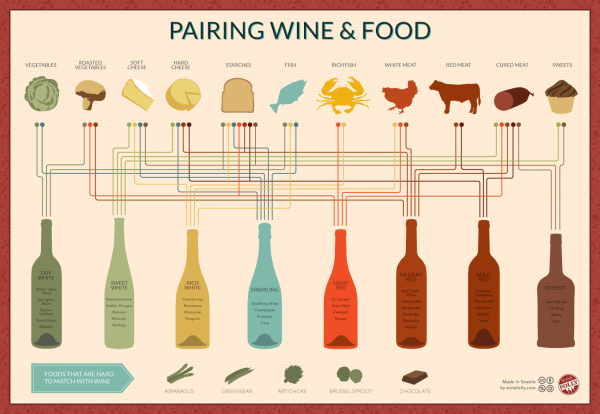 Pairing Wine & Food infographic poster