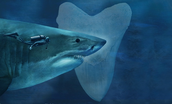 Sizing-Up-Sharks-the-Lords-of-the-Sea-infographic-megalodon.jpg