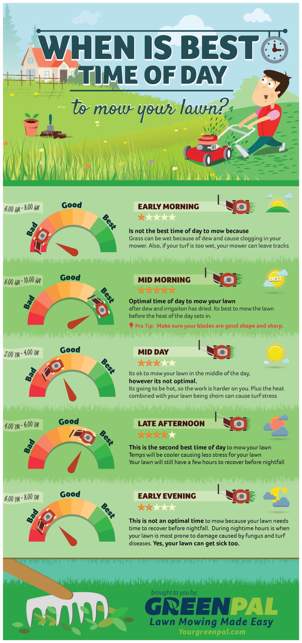 When is Best Time of Day to Mow Your Lawn? infographic