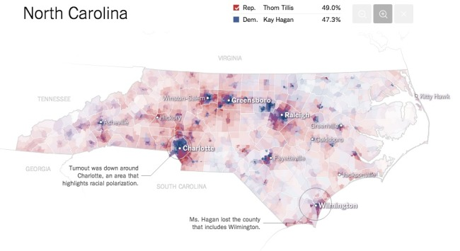 The Most Detailed Maps from the Midterm Elections infographic