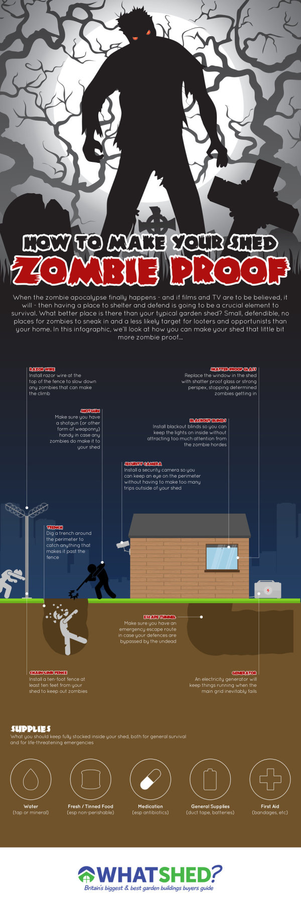 How to Make Your Shed Zombie Proof infographic