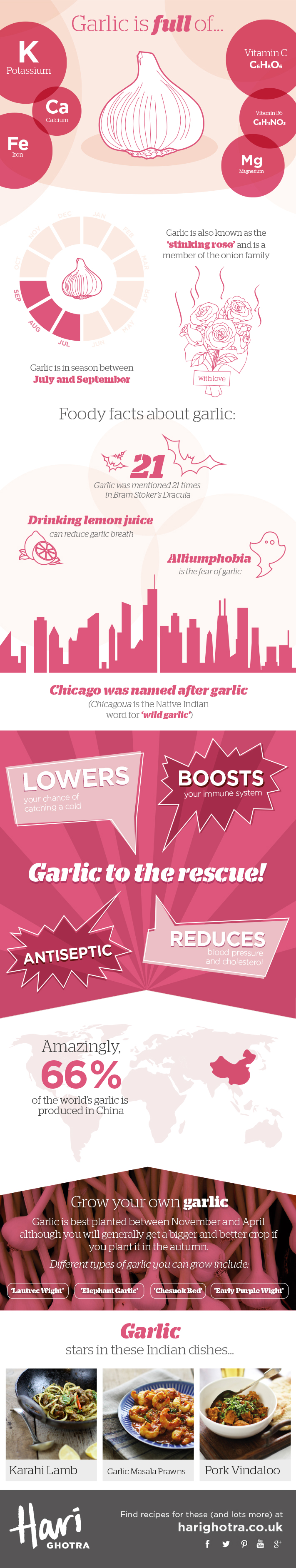 Chef Hari Ghotra's Key Ingredients Garlic Infographic
