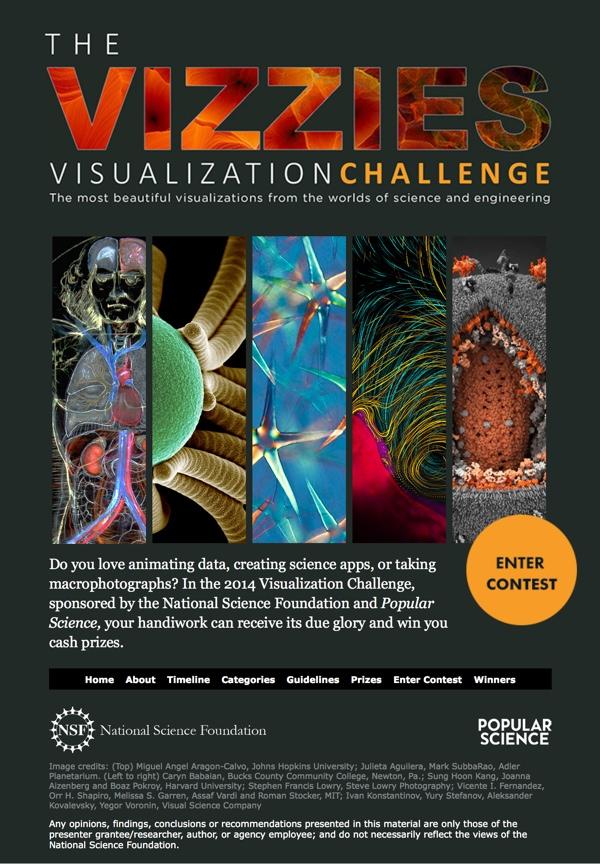 The Vizzies Challenge