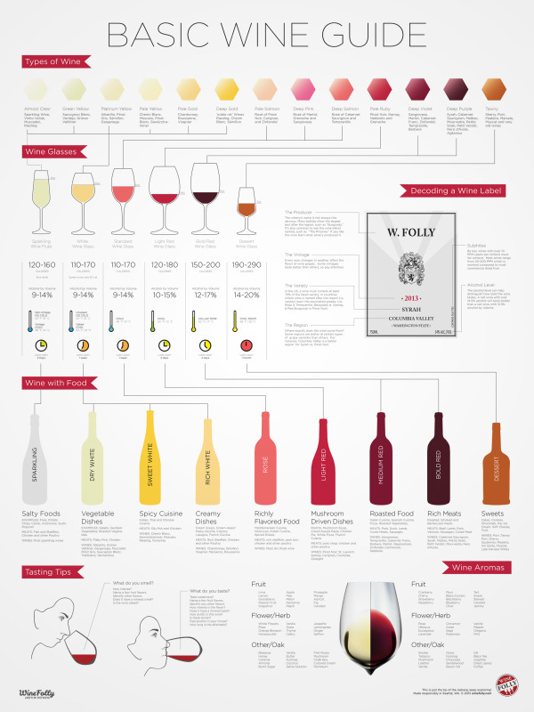 The Basic Wine Guide infographic
