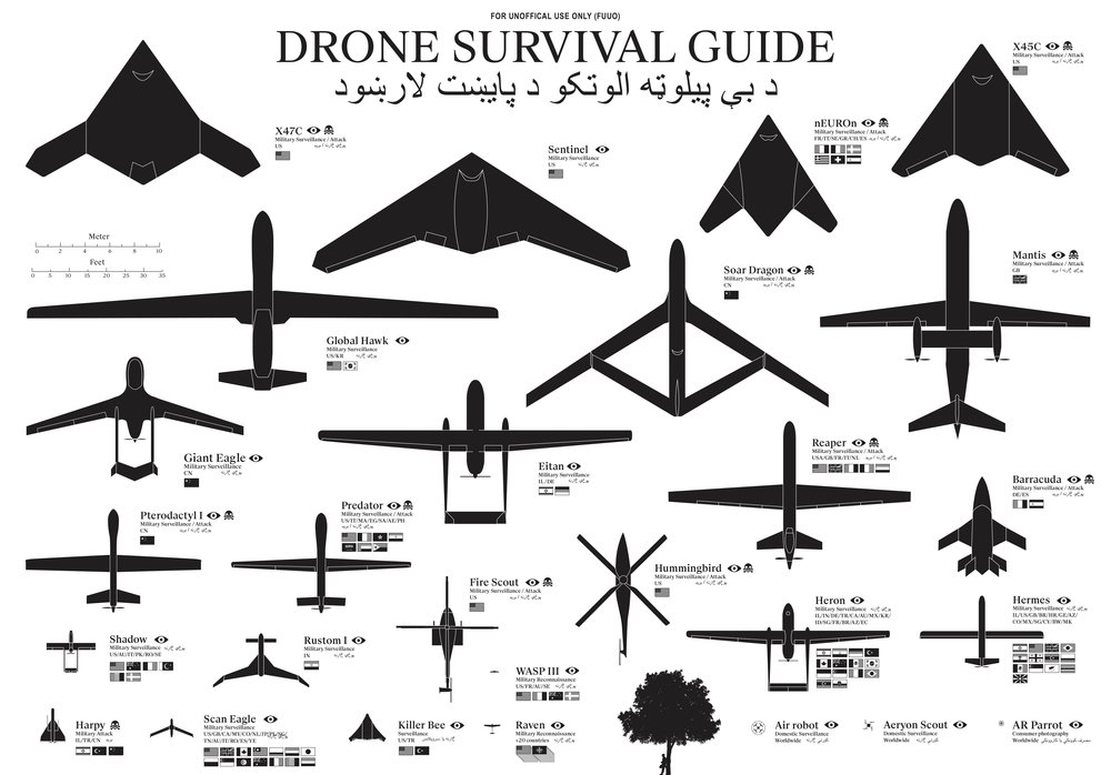The Drone Survival Guide