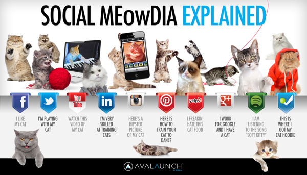 Paws vs. Claws: Social Media Explained infographic