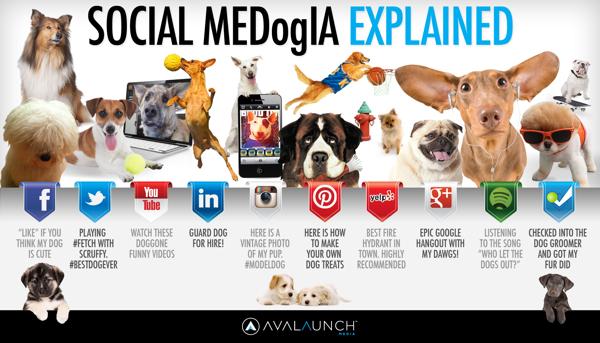 Social_Media_Explained_DOGS.6.27.13.jpg
