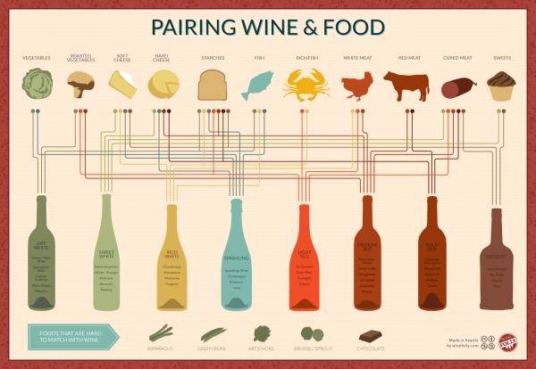Pairing Wine & Food infographic