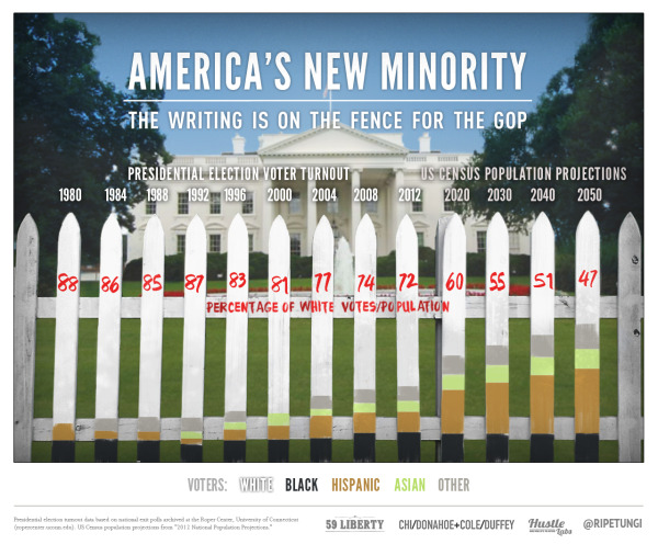 America's New Minority infographic
