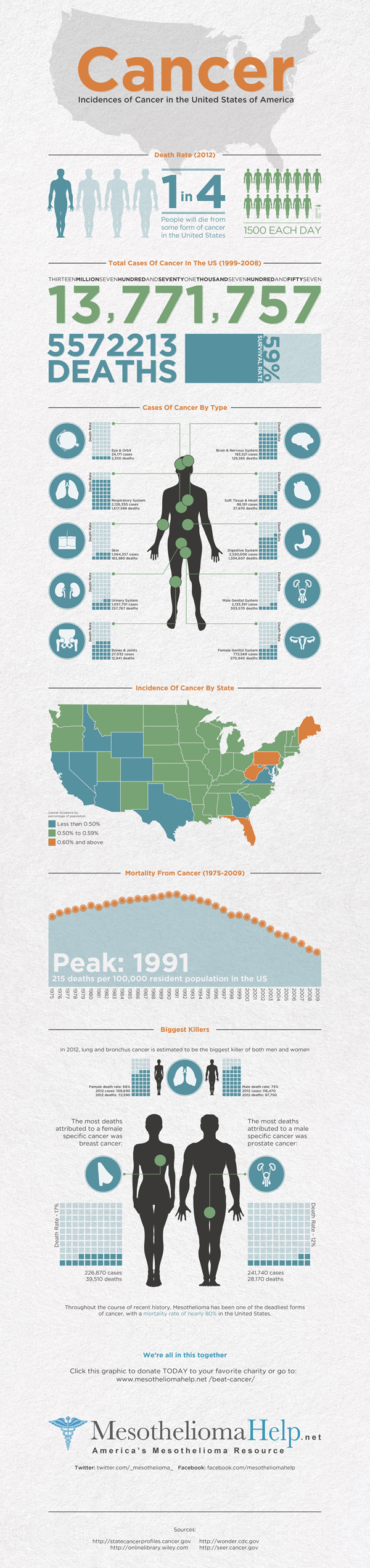 Cancer in the U.S.A. infographic