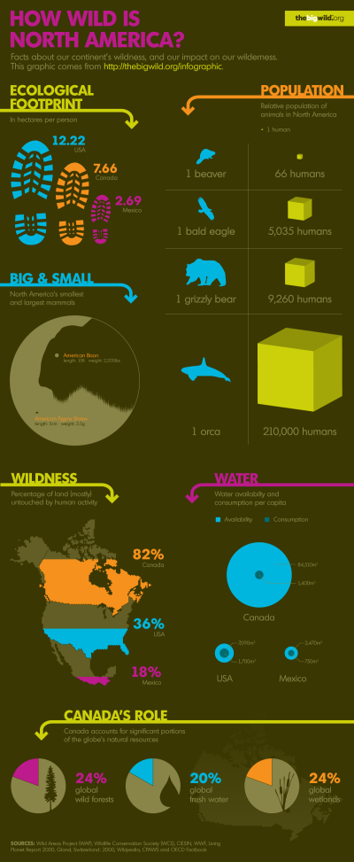 How Wild is North America? infographic