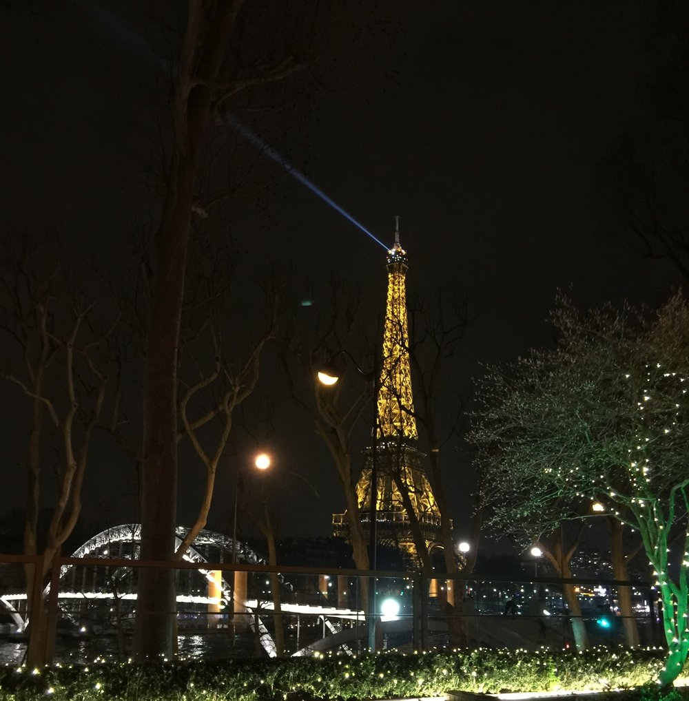 The Eiffel Tower by night in Paris