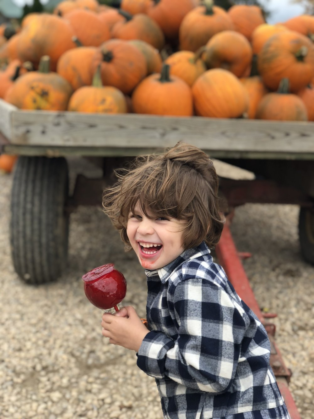 Eating a candy apple at the Pumpkin Patch picking out pumpkins to carve in to jack-o-lanters