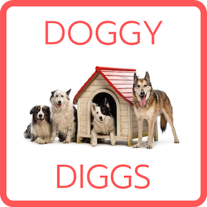 Doggy Diggs Team Building.png