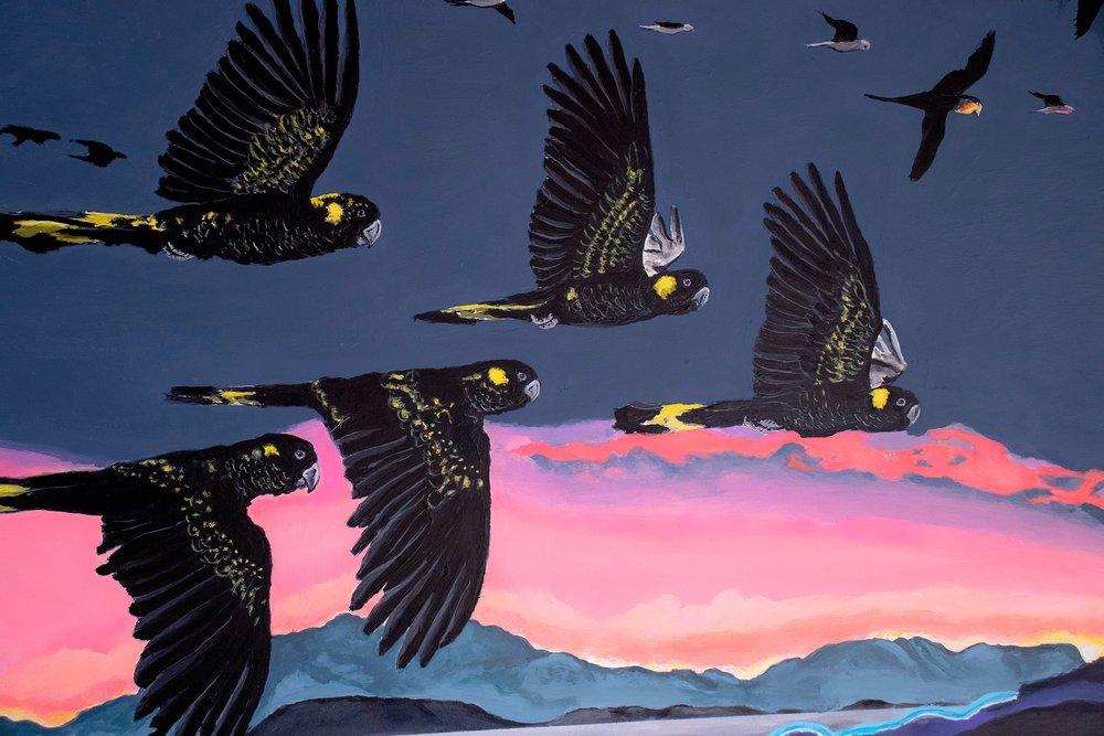 black cockatoos detail.jpg