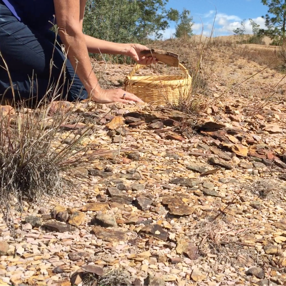 Gathering the rocks