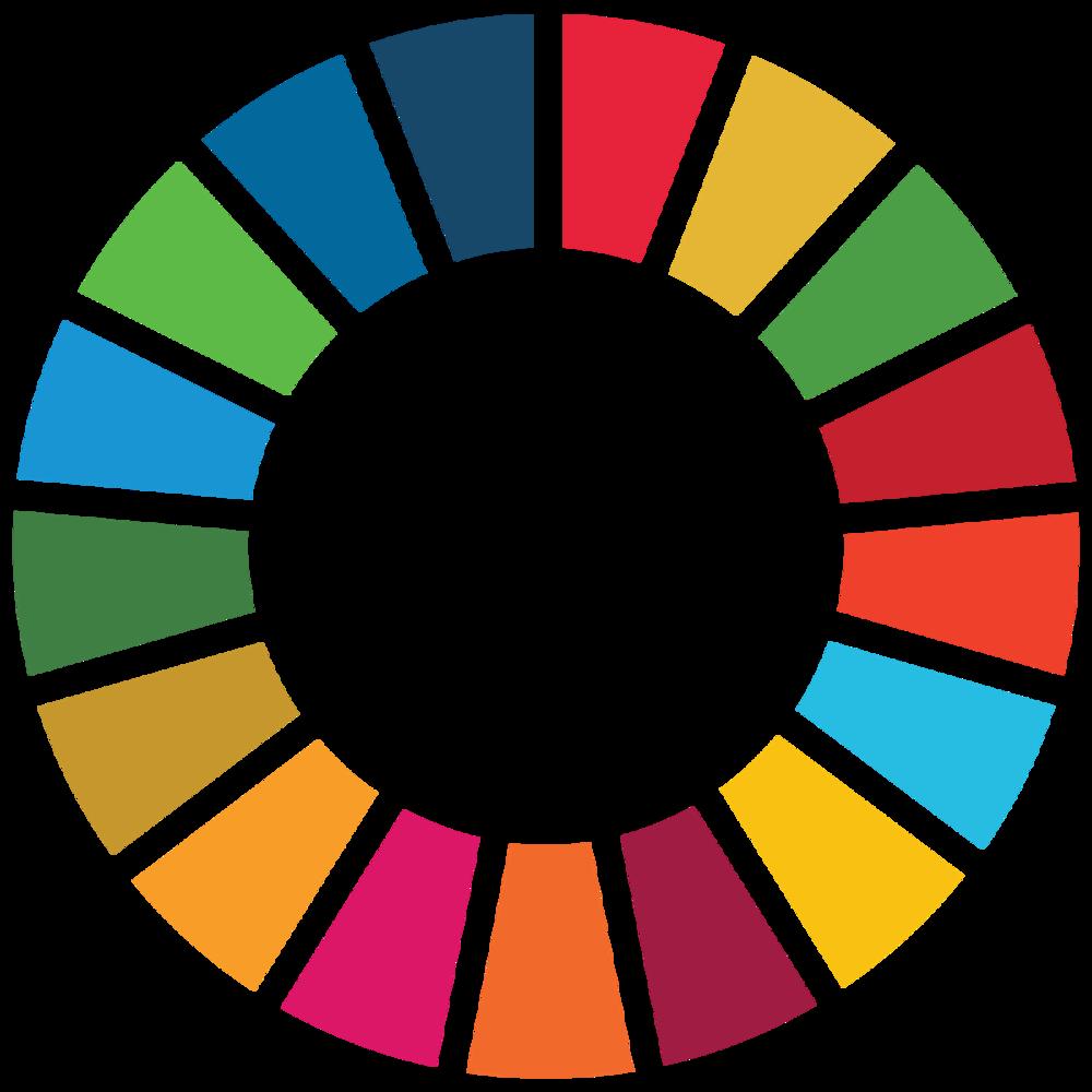 UN Sustainability Development Goal Logo