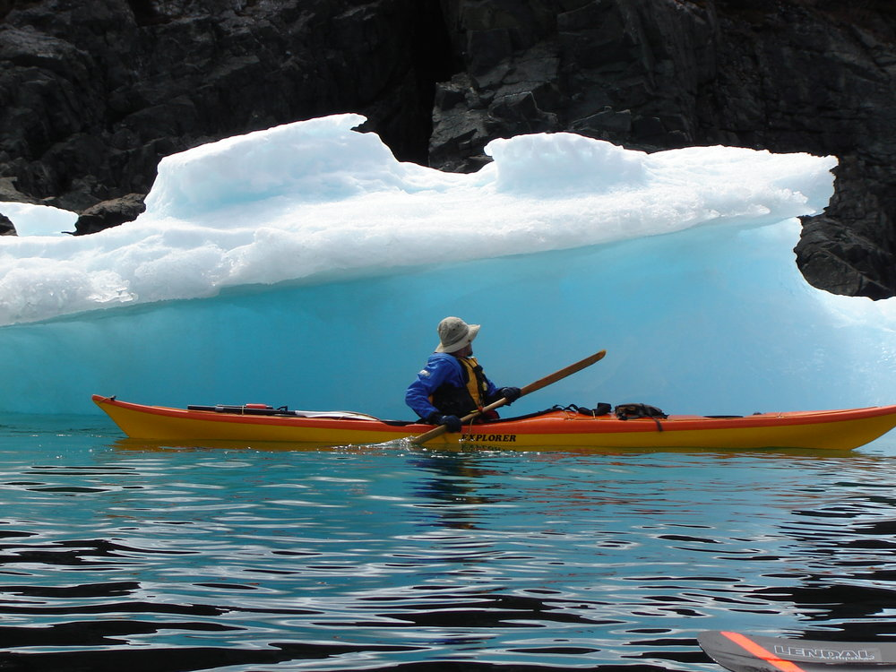 Kayakers enjoy close up views of icebergs