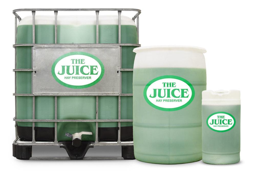 The-Juice-Group-Photo.jpg