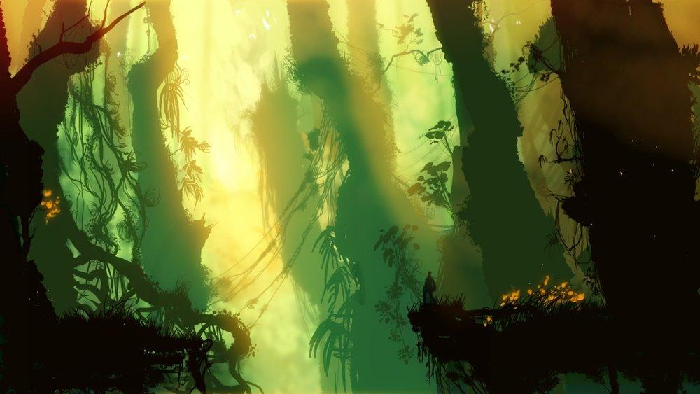 jungle-1600x900.jpg