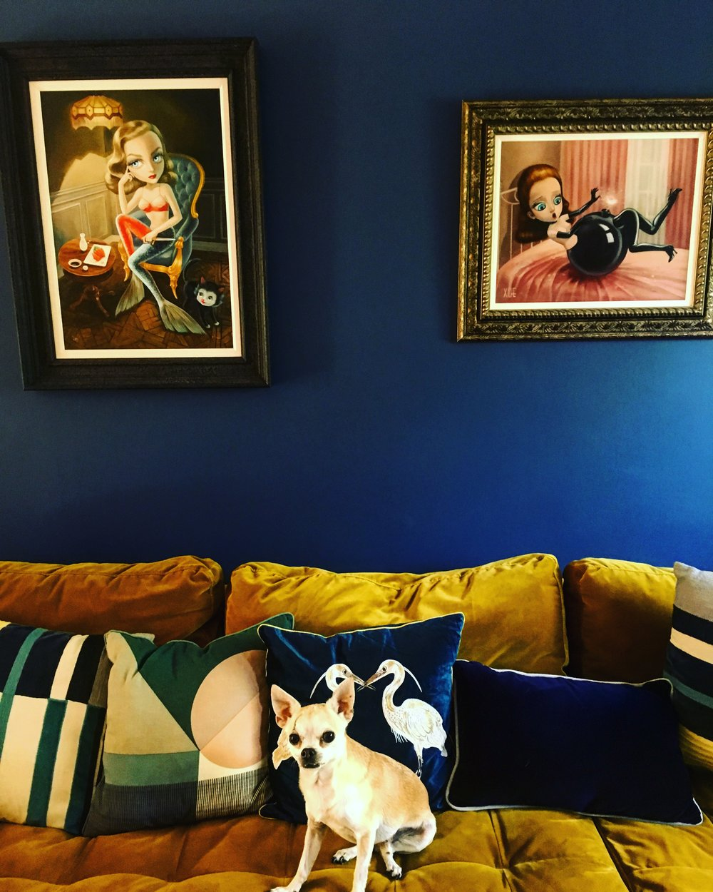 Feature wall - Farrow and Ball Stiffkey Blue Art - Castle Gallery; Artist Xue Wang Sofa - Made.com  Dog - Woody - Owners own Cushions - Made.com