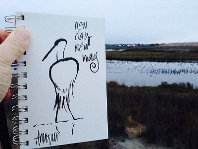 New Day, New Way, Palo Alto Baylands