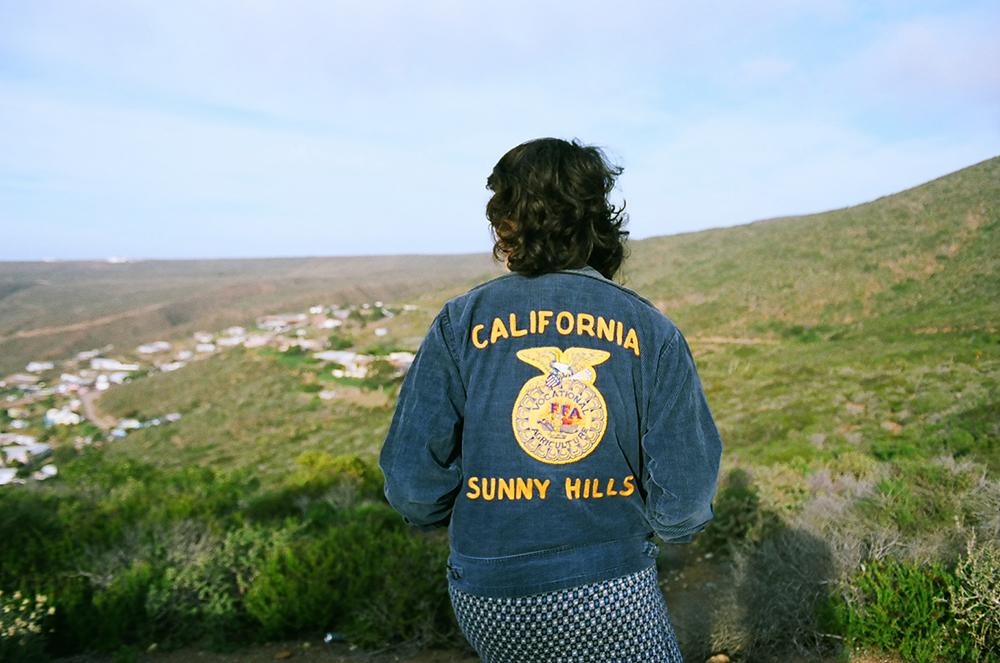 17_sunny hills.jpg
