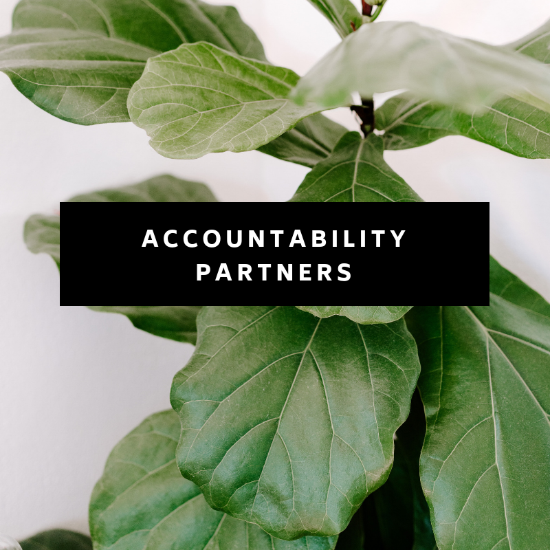 Often the biggest determinant of success is just taking ACTION. We will set you up with an accountability partner inside The Passive Project so that you can stay accountable for those goals you are going to set for yourself. No slackers allowed! ;)