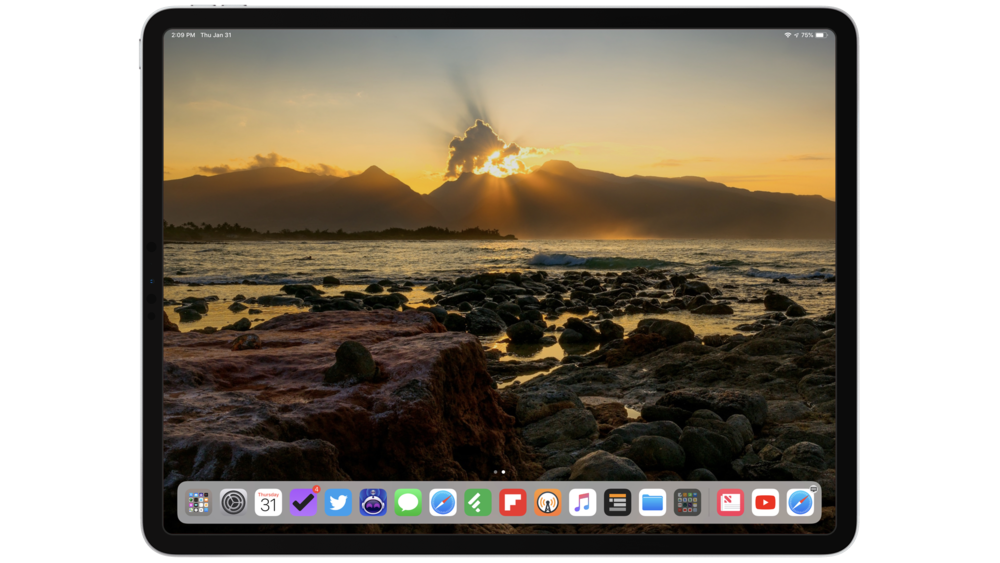 Blank home screen  in iOS 12