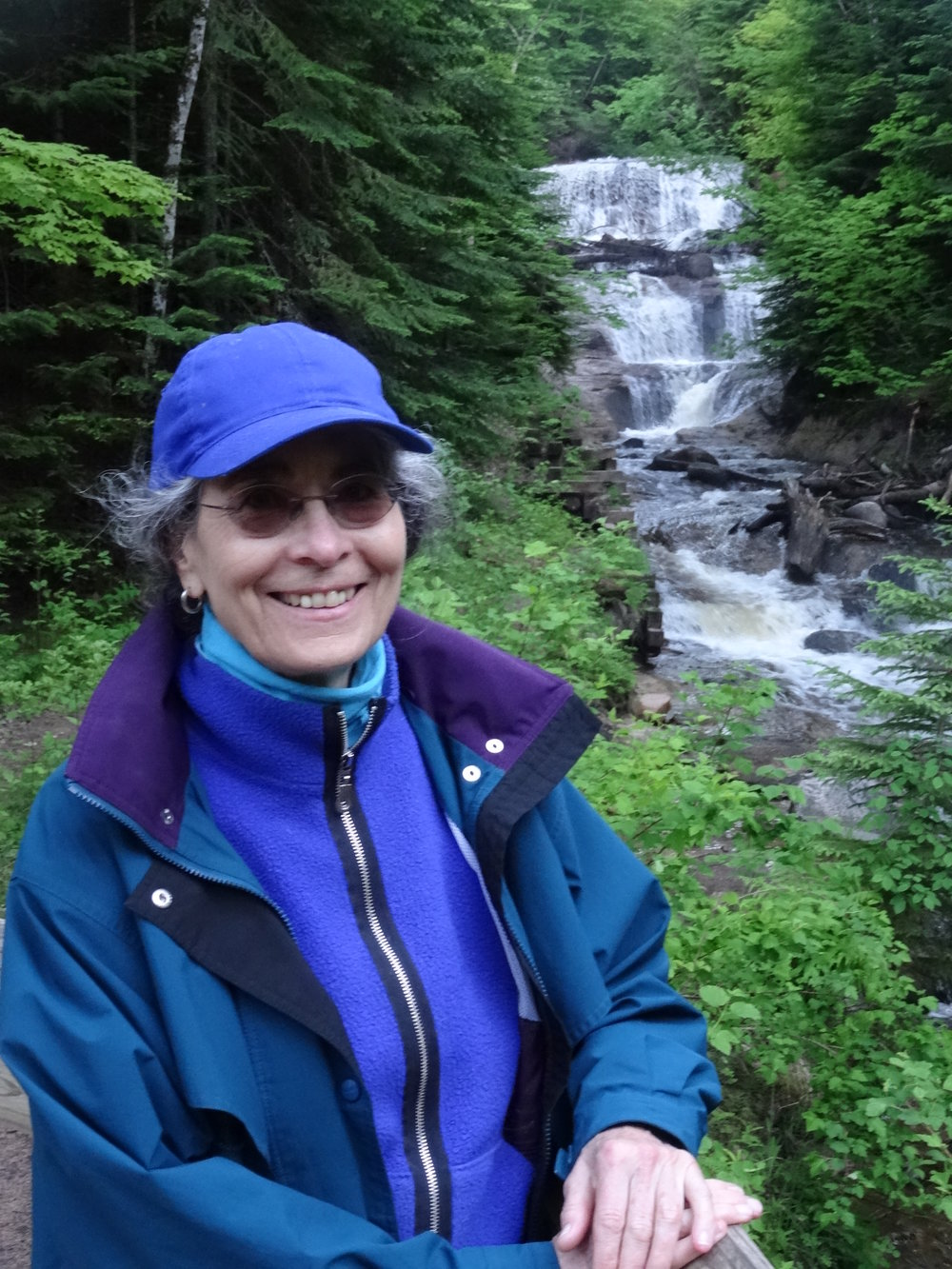 stephanie mills - Stephanie Mills is a longtime bioregionalist. She is the author of Epicurean Simplicity and In Service of the Wild among other books as well as numerous reviews and articles. Mills has lived in Maple City since 1984. Visit her online: www.smillswriter.com.