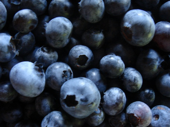 Blueberries.jpg