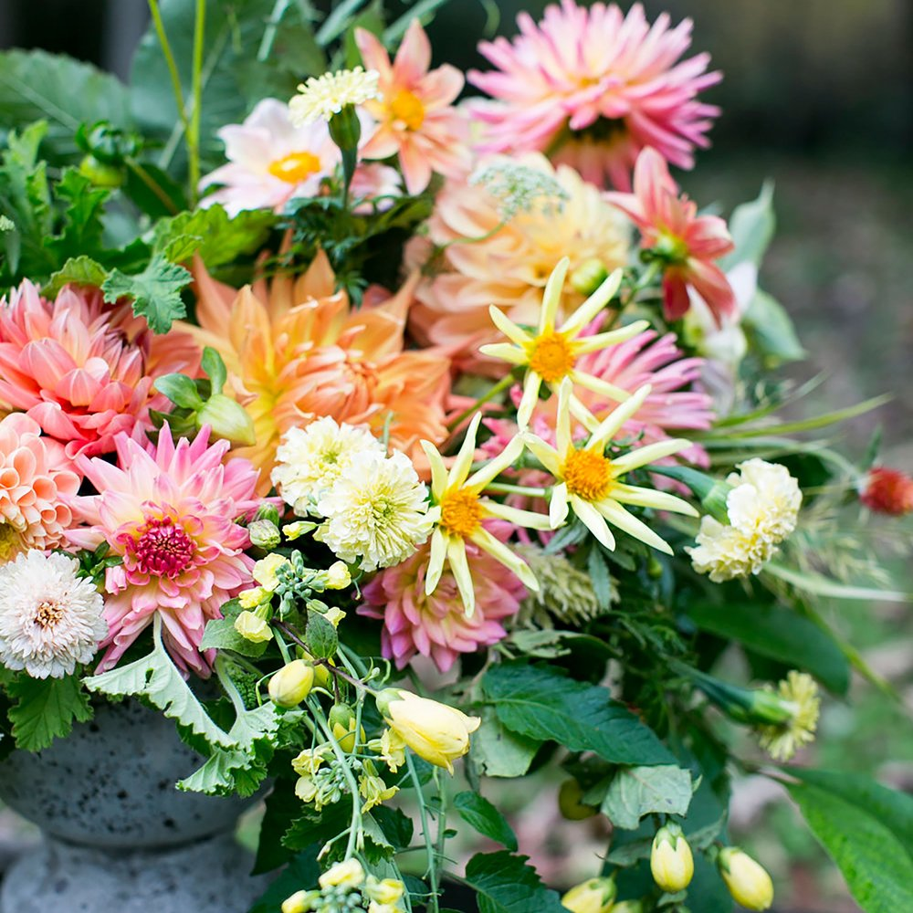 Dahlias Forever - Workshop Fee: $90Sunday, September 15, 1pm- 3pmDahlia season is a special time of year at Two Pony Gardens and we don't want you to miss it! Begin this workshop with a tour from Two Pony Gardens dahlia expert extraordinaire, Lisa Ringer as she tours you through the heirloom dahlia gardens. Learn about the different dahlia varieties, select your favorites and get to the design studio for a dahlia crazy workshop led by Ladyfern designer Summer Badawi. You will learn to create stunning low centerpiece arrangements that are simply spilling in dahlias and other seasonal flowers & foliages from our farm.