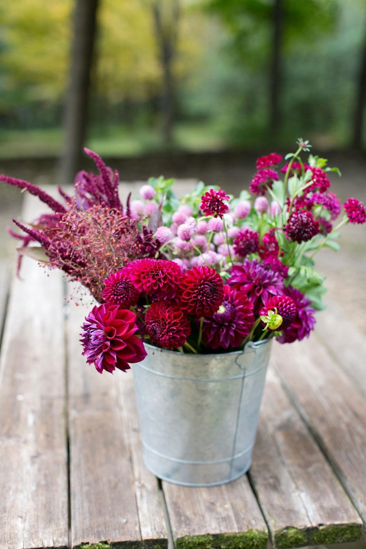 Bulk-Blooms_0003.jpg
